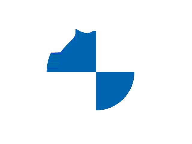 Current BMW Logo (blue & white)